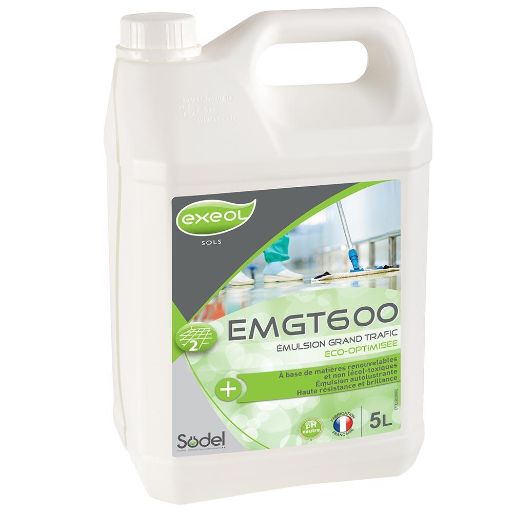 EMGT600